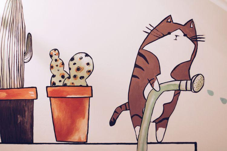 kedi – mim kahve