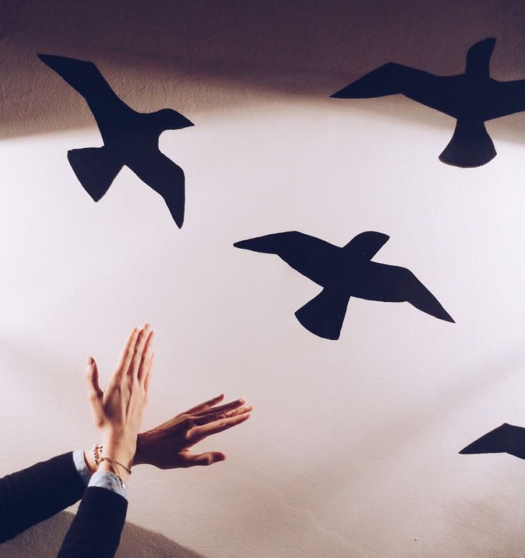 mim kahve elifkubragenc- kuşlar- instgram