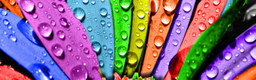 Renkler ve Etkileri | Color's Effects