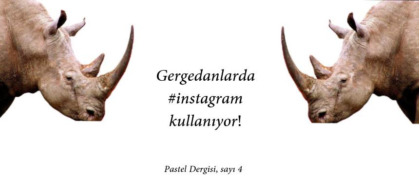 Gergedanlarda #instagram kullanıyor!
